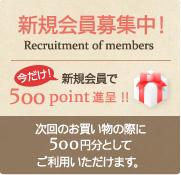 新規会員募集中!今なら新規会員で500point進呈 !!